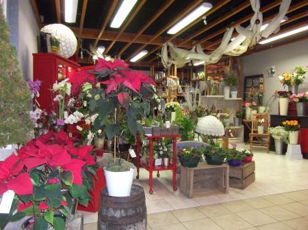 d dicace galerie marchande intermarch st jean d 39 y 14 21 12 2011 la luciole de sophie. Black Bedroom Furniture Sets. Home Design Ideas